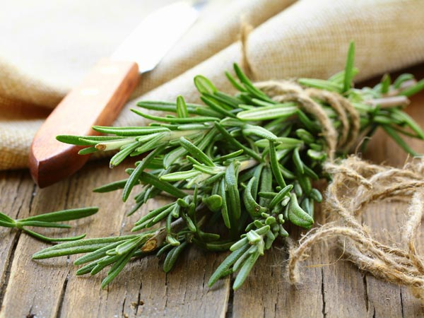 Health Benefits of Thyme Herbs